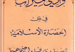 وادي مزاب في ظل الحضارة الإسلامية