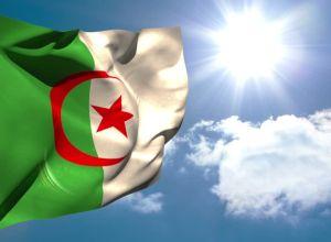 النّضال السّياسي والعسكري من أجل وحدة الجزائر واستقلالها