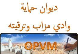 ديوان حماية وادي ميزاب وترقيته